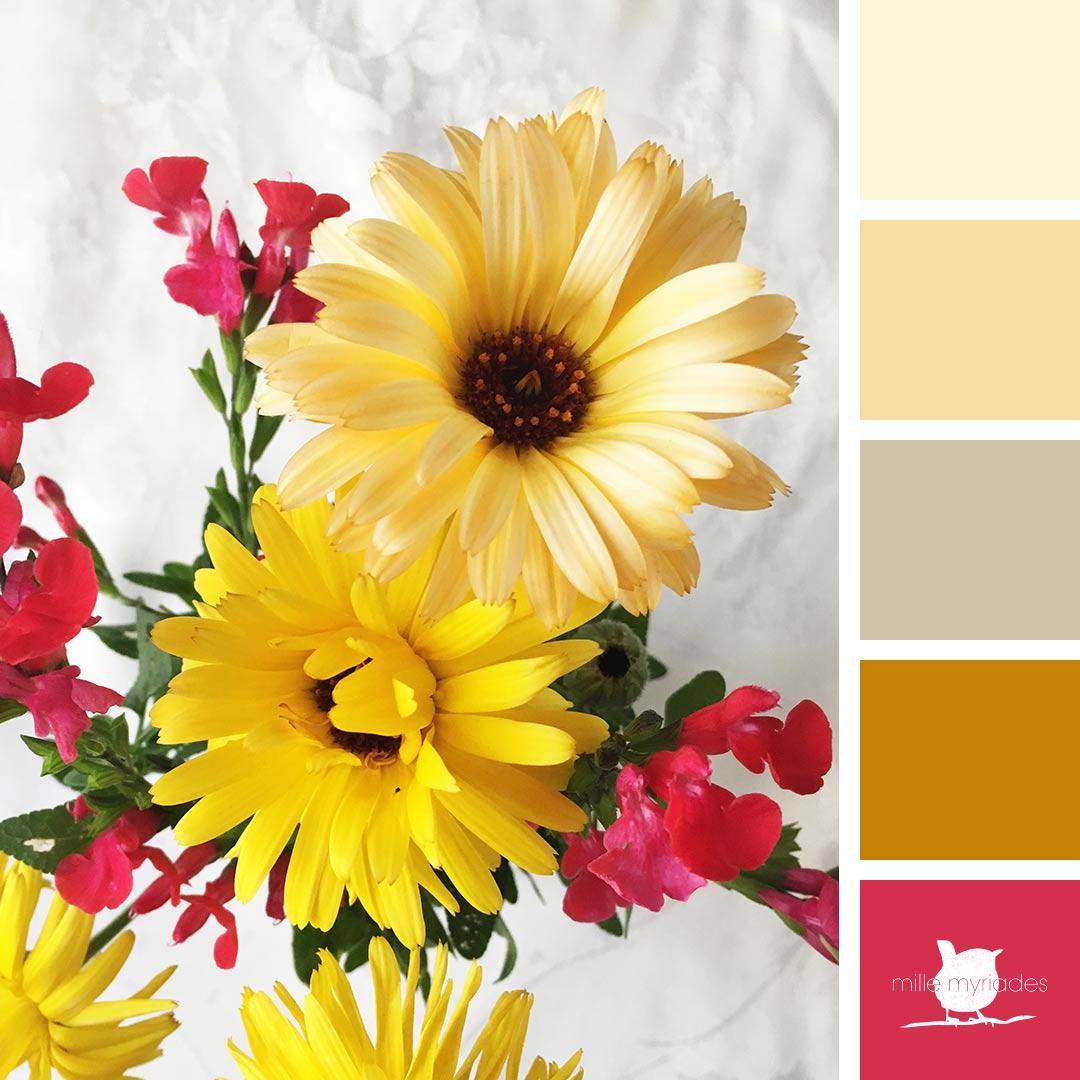Palettes de couleurs, un bouquet d'automne