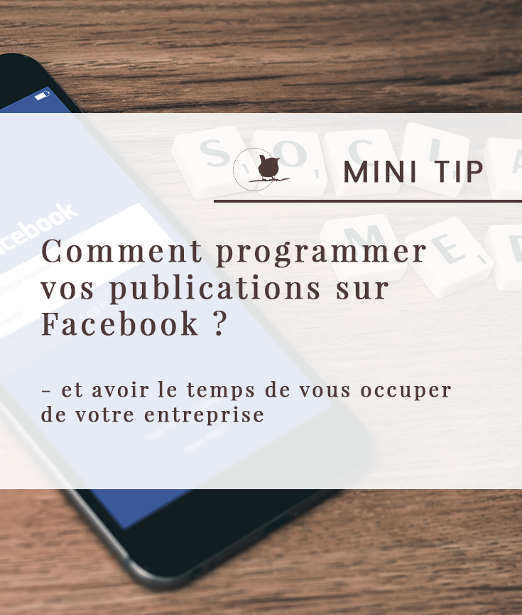 Mini Tip Facebook