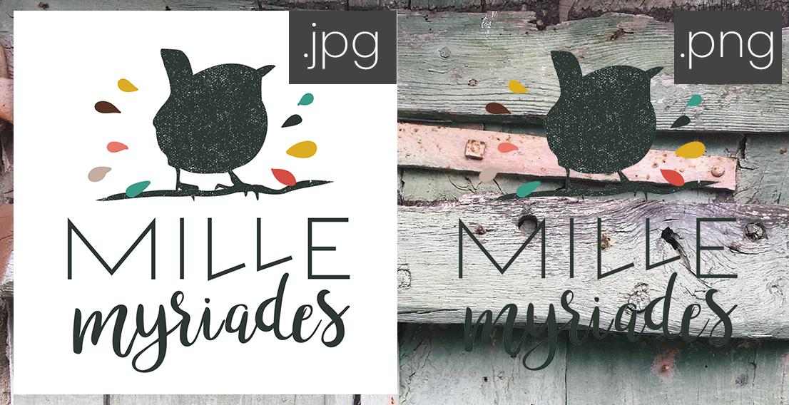 Dimensions et formats - la différence entre le format PNG et JPG